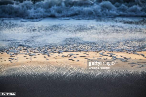 wave on the beach at sunset - christina felschen - fotografias e filmes do acervo