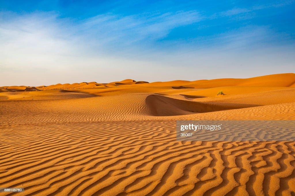 wave pattern desert landscape, oman : Stock Photo