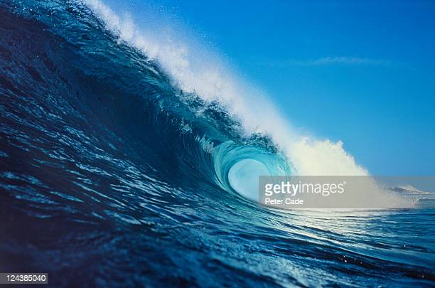 wave - wave stock pictures, royalty-free photos & images