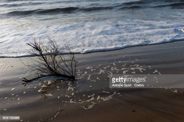 A wave rushes onto the beach of Chatelaillon Beach Chatelaillon a commune located in the CharenteMaritime department in the southwest of France on...