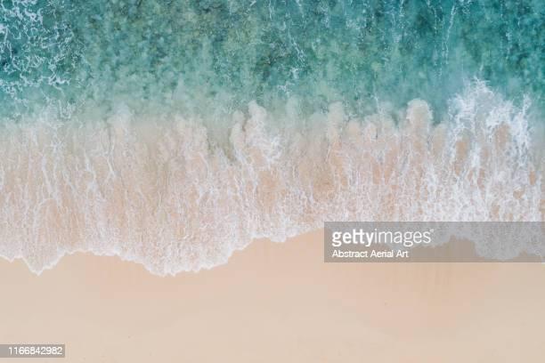 wave textures washing onto a caribbean beach shot from above, barbados - riva dell'acqua foto e immagini stock
