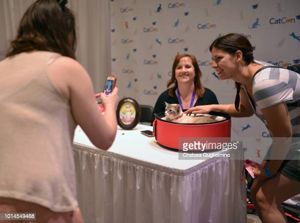 Waverly McTinybeans meets a fan at CatCon Worldwide 2018 at Pasadena Convention Center on August 4 2018 in Pasadena California