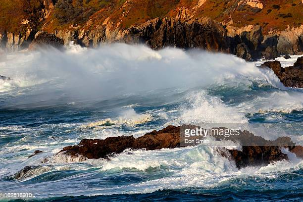 waves and back spray - don smith stock pictures, royalty-free photos & images
