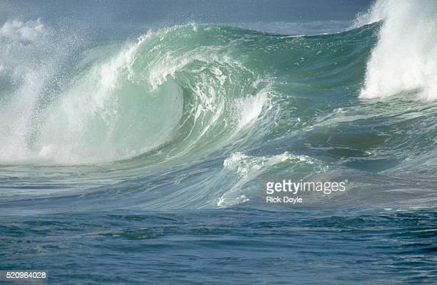 waves breaking in waimea bay - waimea bay - fotografias e filmes do acervo