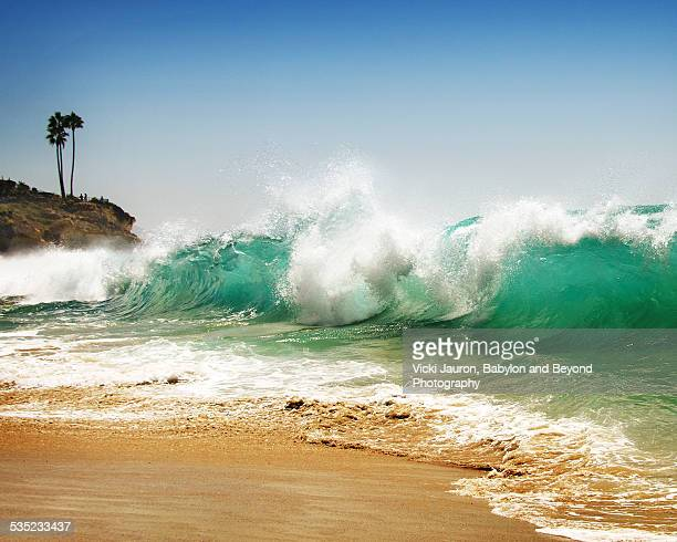 waves, cliff and palm trees at laguna beach - laguna beach california stock pictures, royalty-free photos & images