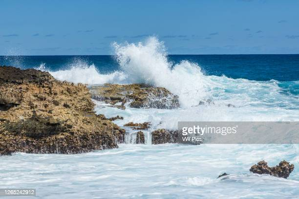 Waves from the Atlantic Ocean crash on the limestone shore of the peninsula of Pointe des Chateaux on the island of Grande-Terre, Guadeloupe.