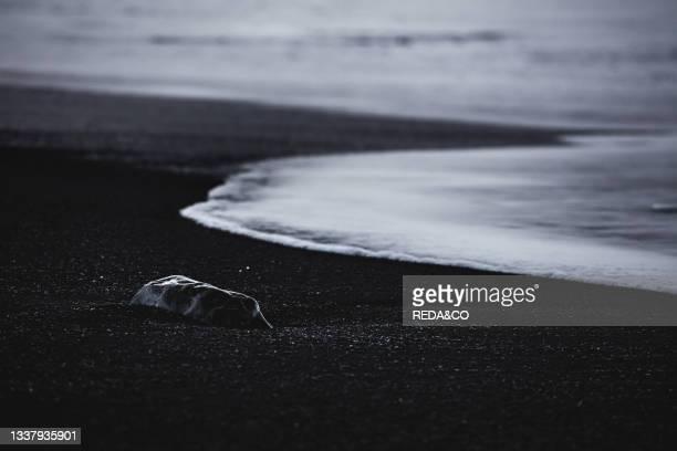 Waves on the Black Sand Beach. Vik. Iceland. North Atlantic Ocean.