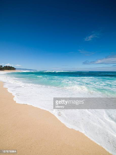 waves splashing on a beach in oahu, hawaii - waimea bay hawaii stock photos and pictures
