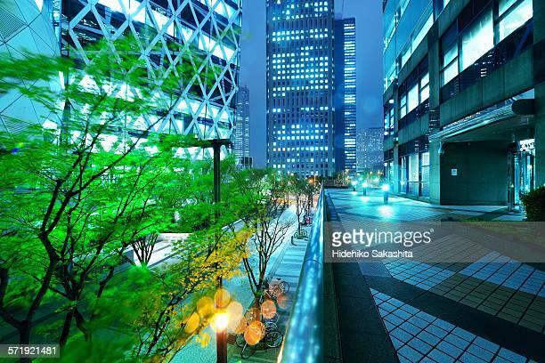 waving trees at rainy night - nishi shinjuku stock-fotos und bilder