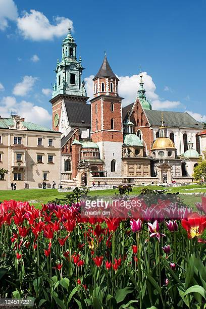 wawel castle in krakow - wawel cathedral stock pictures, royalty-free photos & images