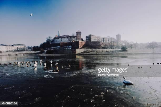Wawel Castle in winter