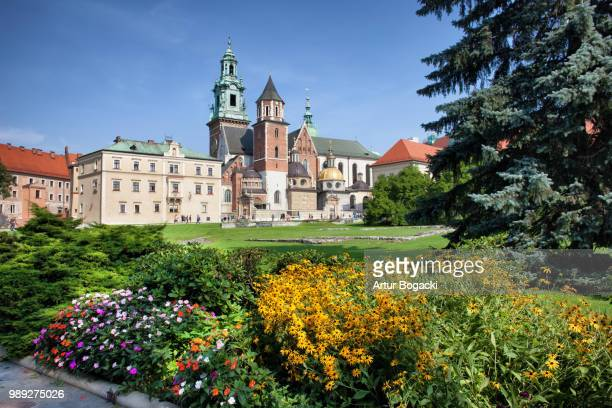 wawel cathedral and royal garden in krakow - royal cathedral stock pictures, royalty-free photos & images