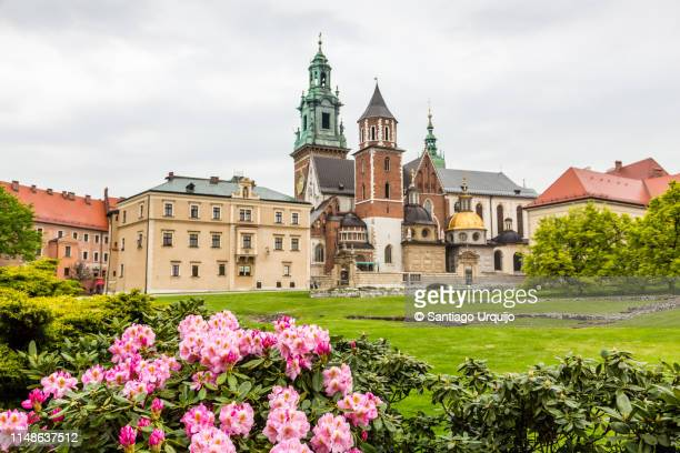 wawel cathedral on wawel hill - wawel cathedral stock pictures, royalty-free photos & images