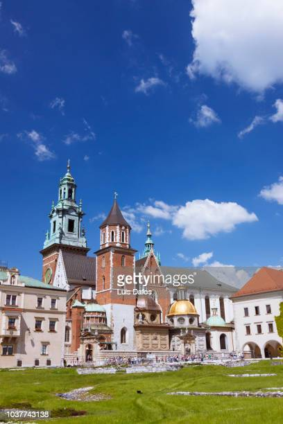wawel cathedral - wawel cathedral stock pictures, royalty-free photos & images