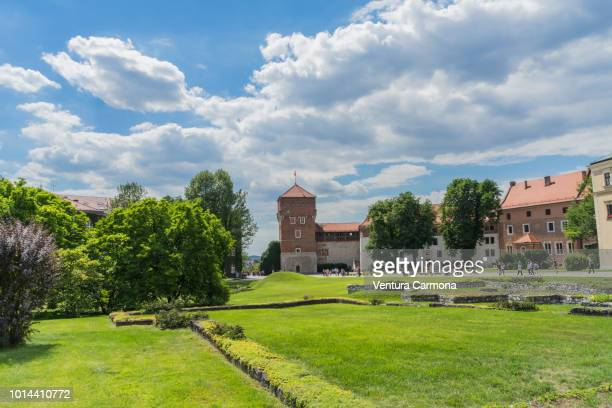 wawel royal castle and the wawel hill - kraków, poland - kraków ストックフォトと画像