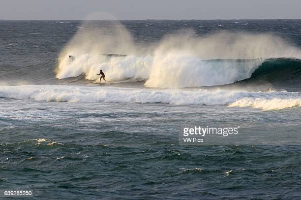 Wawes and surfers in Hoêokipa Beach Maui Hawaii Hoêokipa Beach Park is one of the top spots for ocean sports and recreation in Maui Located at Mile...