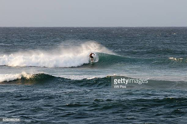 Wawes in Hoêokipa Beach Maui Hawaii Hoêokipa Beach Park is one of the top spots for ocean sports and recreation in Maui Located at Mile on HŠna...