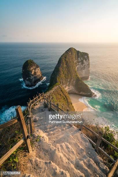 way down to kelingking beach in evening sunset in summer season, nusa penida island near bali island, indonesia - nusa penida stock pictures, royalty-free photos & images