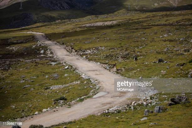 a way forward,tibet,china - tar stock pictures, royalty-free photos & images