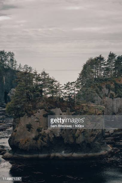 way northwest - cape flattery stock photos and pictures
