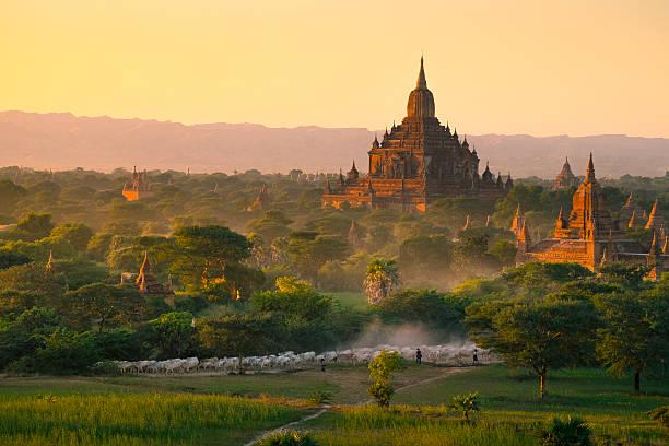 Way Of Life In Bagan Wall Art