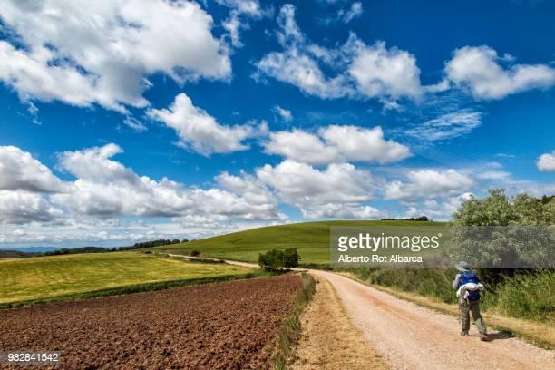way of st. james between green fields, spain - camino de santiago stock pictures, royalty-free photos & images