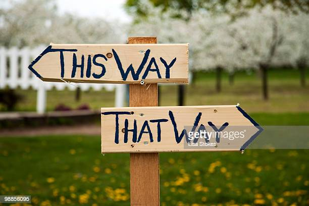 Way sign 'This Way, That Way'