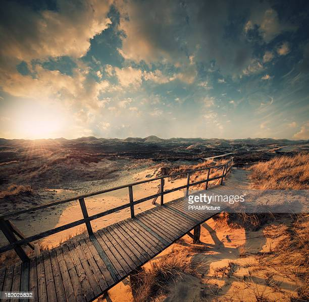 way through the dunes - north sea stock pictures, royalty-free photos & images