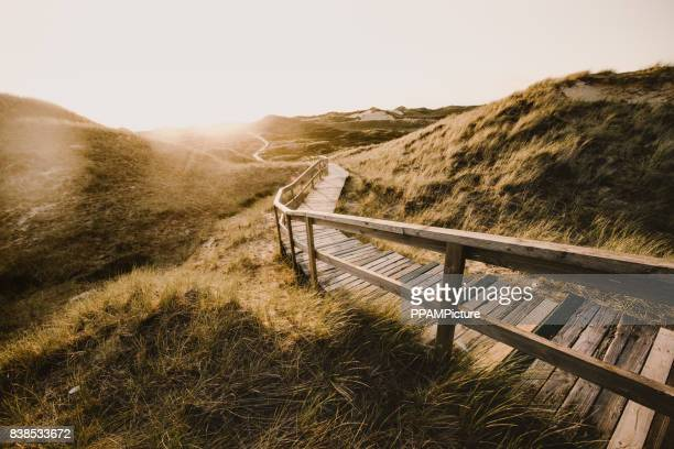way through the dunes - schleswig holstein stock photos and pictures
