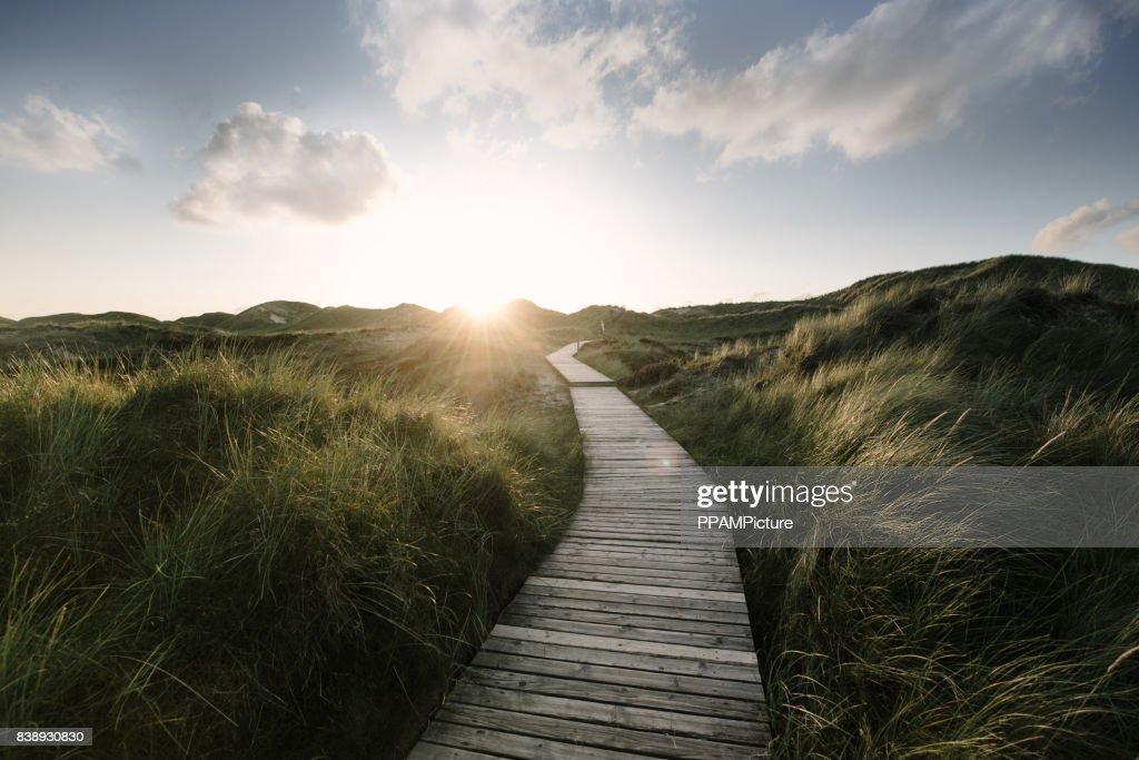 Fahrt durch die Dünen : Stock-Foto