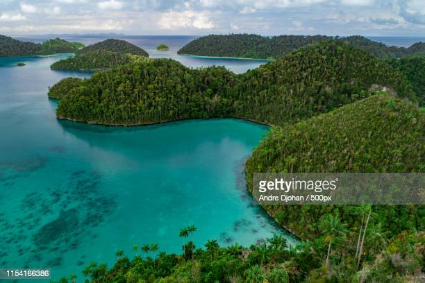 wayag is green - raja ampat islands stock photos and pictures
