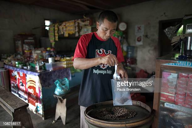 Wayan Dira bags Cafe Luwak beans January 20 2011 in Pupuan village Bali Indonesia Sari and her husband Wayan Dira have had a small coffee business...