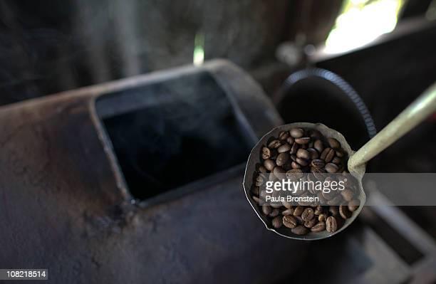 Wayan Dira checks on Luwak beans that have just been roasted January 20 2011 in Pupuan village Bali Indonesia Sari Artini and her husband Wayan Dira...