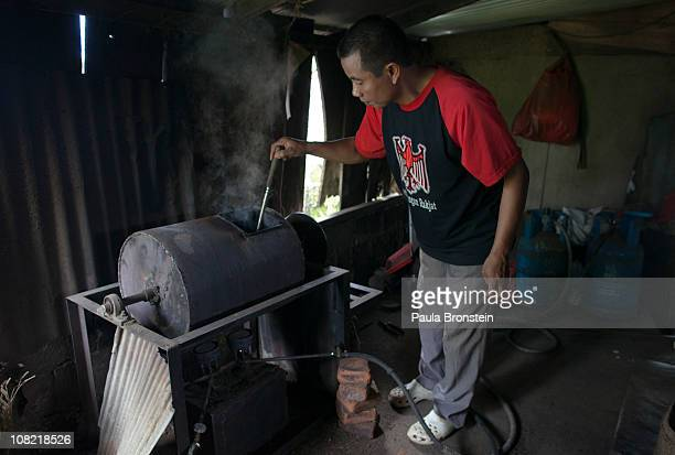 Wayan Dira stirs Luwak beans while they roast January 20 2011 in Pupuan village Bali Indonesia Sari and her husband Wayan Dira have had a small...
