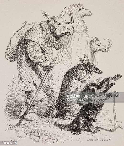 Wayfarers from the antipodes: rhinoceros; armadillo; camel; warthog and platypus, humanized animals, engraving by Bernard-Pollet from a drawing by...