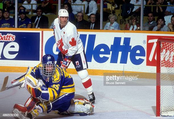 Wayne Gretzky of Team Canada looks on as goalie Tommy Soderstrom of Team Sweden guards the net during the 1991 Canada Cup SemiFinals game on...