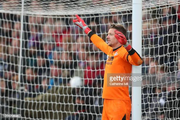 Wayne Hennessey of Crystal Palace during the Premier League match between Crystal Palace and Arsenal FC at Selhurst Park on October 28 2018 in London...