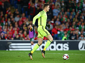 wayne hennessey wales during world cup