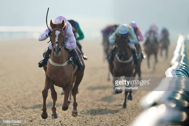 Wayne Hutchinson riding Arkyn win The starsportsbet Standard Open NH Flat Race at Lingfield Park on January 04 2019 in Lingfield England