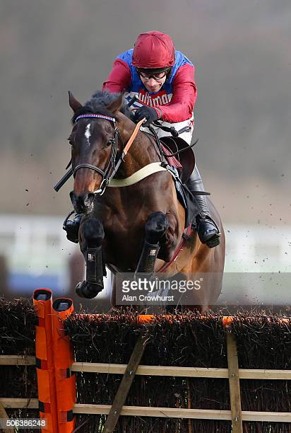 Wayne Hutchinson riding Gibralfaro clear the last to win The Ascot Supporting Our Local Community Juvenile Hurdle Race at Ascot racecourse on January...