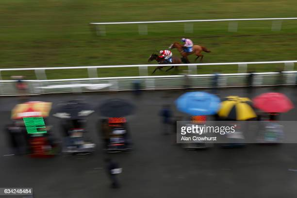 Wayne Hutchinson riding Tara View win the Weatherbys General Stud Book Goes Online Maresâ handicap Hurdle Race at Ludlow racecourse on February 8...