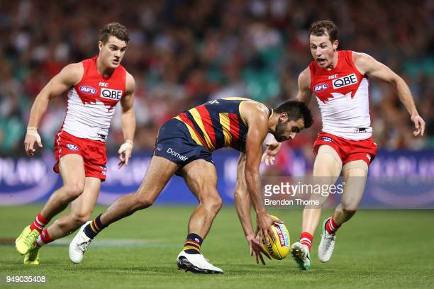 Wayne Milera of the Crows grabs a loose ball during the round five AFL match between the Sydney Swans and the Adelaide Crows at Sydney Cricket Ground...