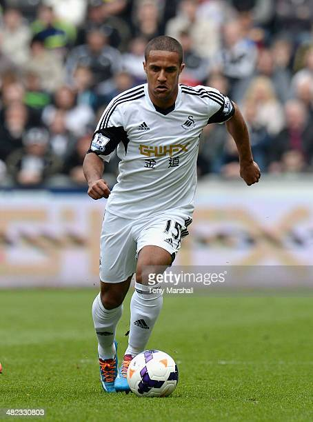 Wayne Routledge of Swansea City during the Barclays Premier League match between Swansea City and Norwich City at Liberty Stadium on March 29 2014 in...