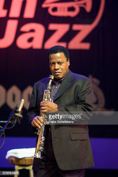 Wayne Shorter, saxophone, performs at the North Sea Jazz Festival on July 12th 2002 in Amsterdam, Netherlands.