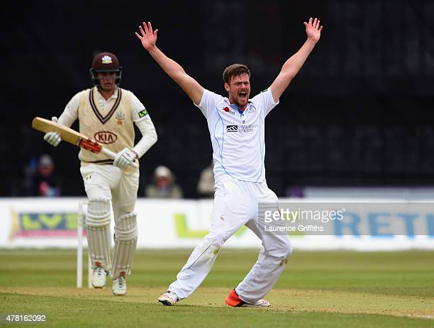 Wayne White of Derbyshire celebrates the wicket of Dominic Sibley of Surrey during the LV County Championship match between Derbyshire and Surrey at...