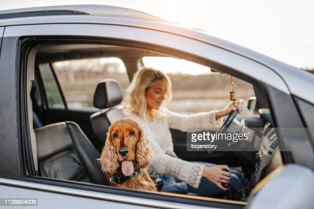 we always travel together - riding stock pictures, royalty-free photos & images