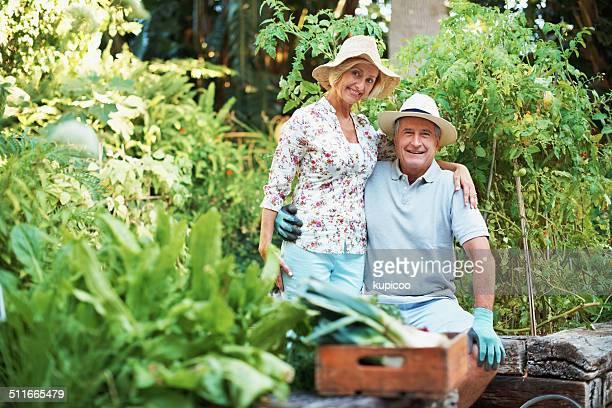 Abbiamo aumentato il giardino con passione e impegno