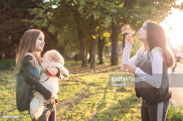 we have fun together - girl blows dog stock photos and pictures