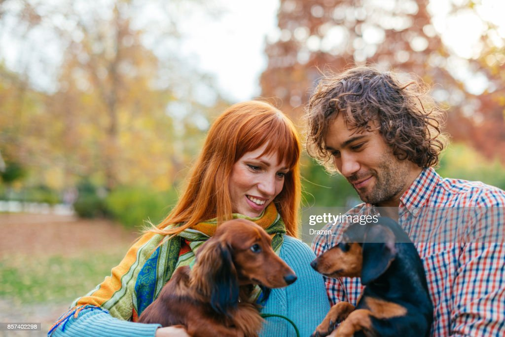 dachshund dating