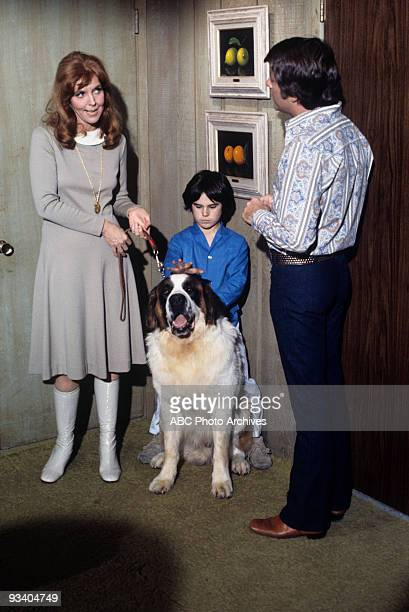 S FATHER We Love Annie Season Three 3/1/72 Anne Meara Brandon Cruz Bill BIxby on the ABC Television Network comedy The Courtship of Eddie's Father...